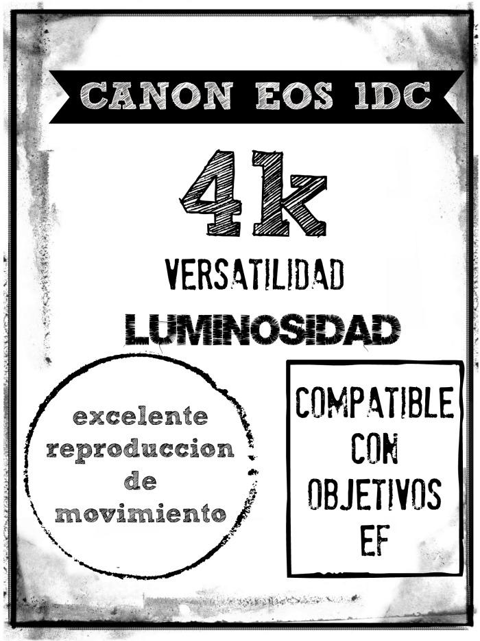 cámara-vídeo-audiovisuales-canon-1D-productora-Albacete-Denia
